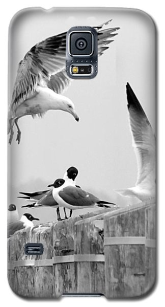 Move It Or Lose It Buster Galaxy S5 Case