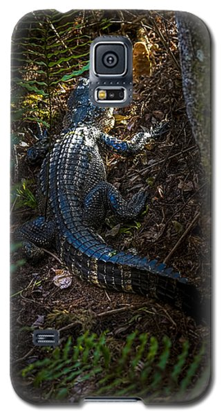 Mr Alley Gator Galaxy S5 Case by Marvin Spates