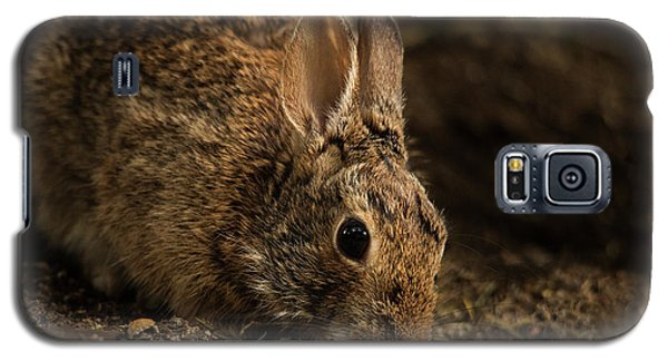 Mr. B Galaxy S5 Case