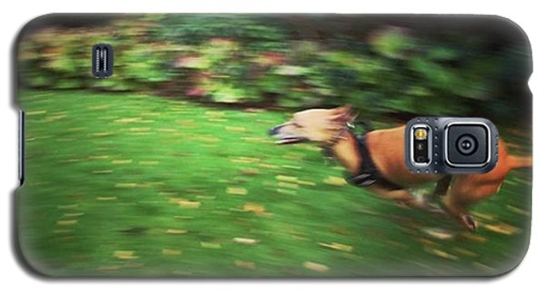 Galaxy S5 Case - Mr Finly Enjoying A Few Rapid Laps Of by John Edwards