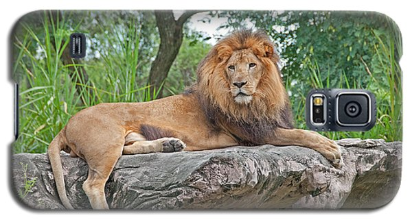 Galaxy S5 Case featuring the photograph Mr Majestic by John Black