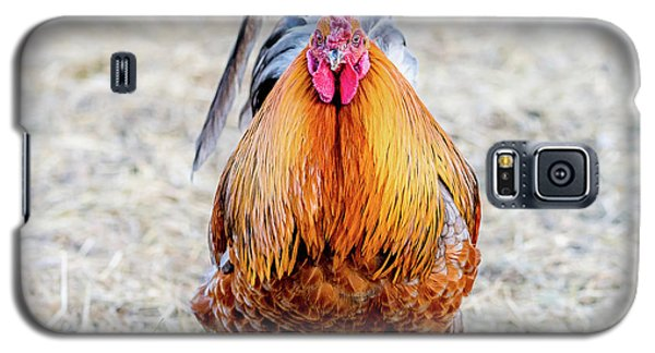 Mr. Rooster Galaxy S5 Case