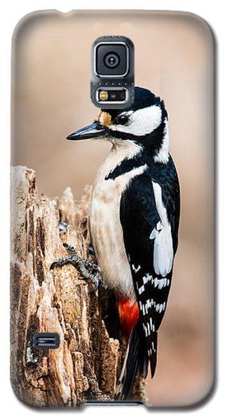 Mrs Woodpecker Galaxy S5 Case