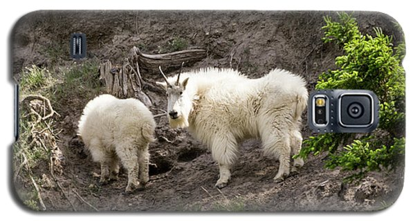Mt Goat Outing Galaxy S5 Case