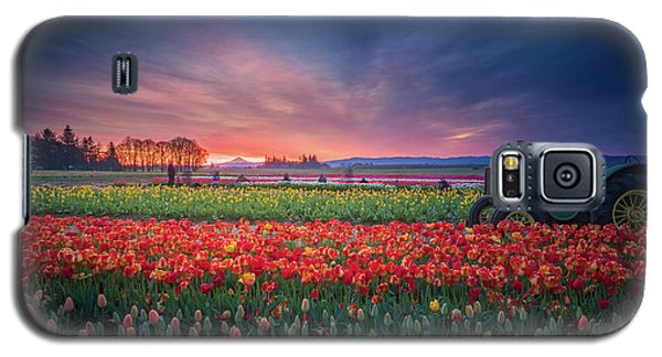 Mt. Hood And Tulip Field At Dawn Galaxy S5 Case