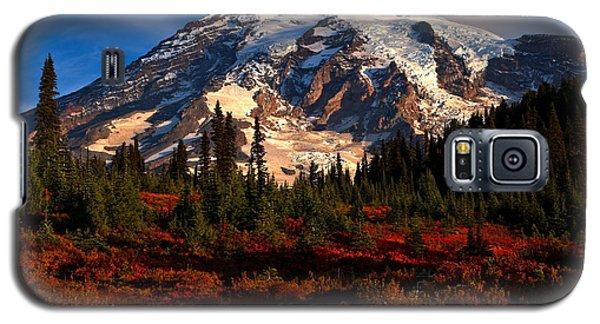 Mt. Rainier Paradise Morning Galaxy S5 Case
