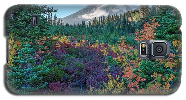 Mt Rainier With Autumn Colors Galaxy S5 Case