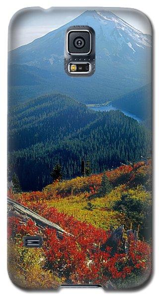 1m4903-mt. St. Helens 1975  Galaxy S5 Case