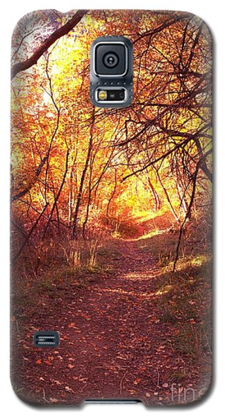 Mueller Park In The Fall Galaxy S5 Case