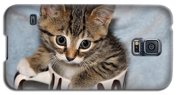 Mug Kitten Galaxy S5 Case
