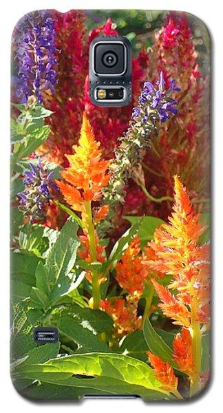Multi-color Energy Galaxy S5 Case