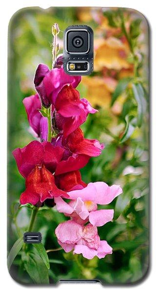 Multicolor Snapdragon Snaptastic Galaxy S5 Case