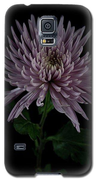 Mum, No.3 Galaxy S5 Case