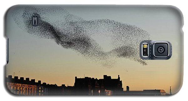 Murmuration Of Starlings Over Aberystwyth Wales Uk Galaxy S5 Case