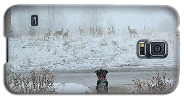 Murphy Watches The Deer Galaxy S5 Case