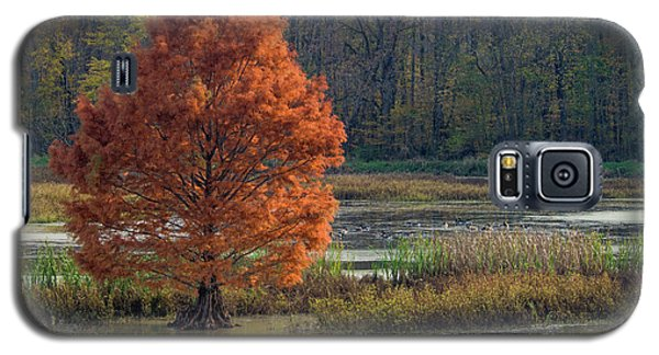 Galaxy S5 Case featuring the photograph Muscatatuck - D009967 by Daniel Dempster