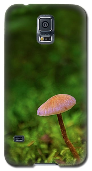 Mushflower Galaxy S5 Case