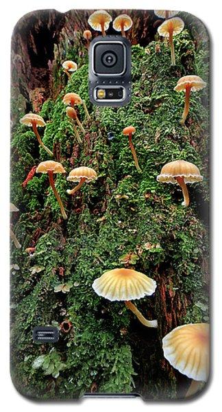 Mushroom Colony Galaxy S5 Case