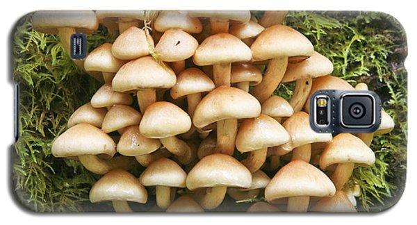 Mushroom Condo Galaxy S5 Case