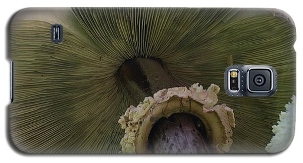 Galaxy S5 Case featuring the photograph Mushroom Down Under  by Bruce Bley