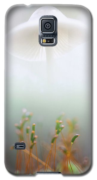 Mushroom Dreams, Mycena Galericulata Galaxy S5 Case by Dirk Ercken