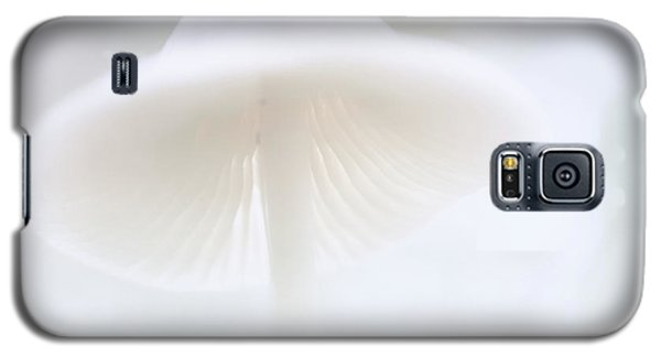 Galaxy S5 Case featuring the photograph Mushroom Fairy Dreams, Mycena Galericulata by Dirk Ercken