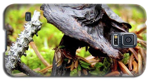Mushroom Galaxy S5 Case