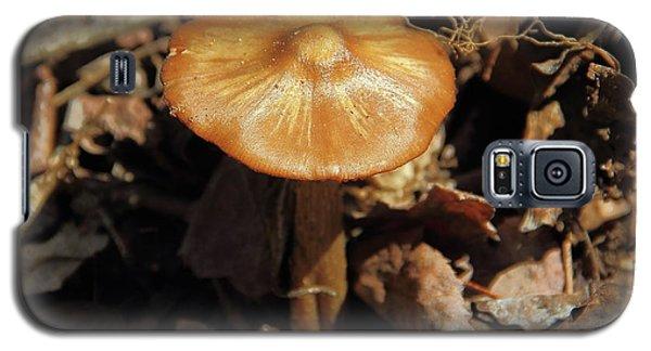 Mushroom Rising Galaxy S5 Case