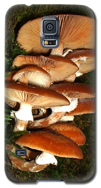 Galaxy S5 Case featuring the photograph Mushrooms 015 by George Bostian