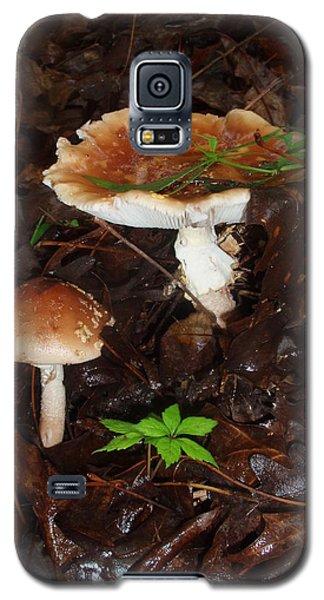 Mushrooms Rising Galaxy S5 Case