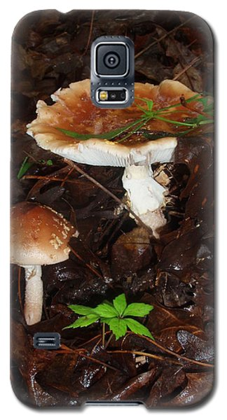Mushrooms Rising Galaxy S5 Case