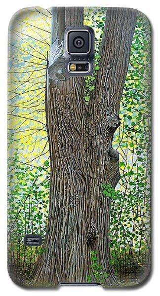 Muskoka Maple Galaxy S5 Case