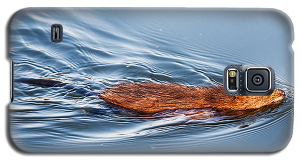 Muskrat Speed Swiming Galaxy S5 Case