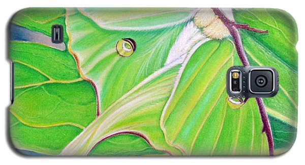 Must Be Dreaming Galaxy S5 Case by Amy Tyler