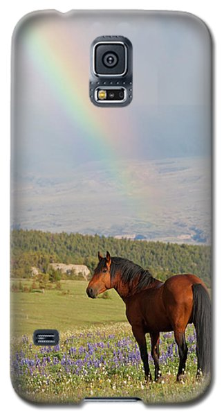Mustang And Rainbow Galaxy S5 Case