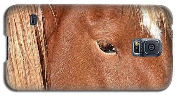 Mustang Macro Galaxy S5 Case