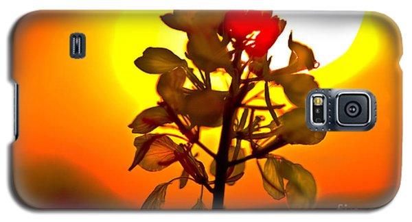 Mustard Sunset Galaxy S5 Case