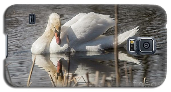 Galaxy S5 Case featuring the photograph Mute Swan - 3 by David Bearden