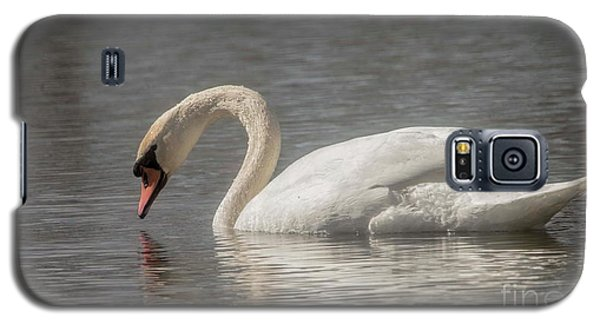 Galaxy S5 Case featuring the photograph Mute Swan by David Bearden