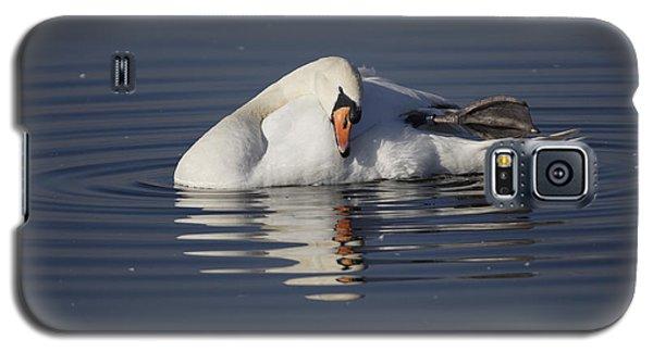 Mute Swan Resting In Rippling Water Galaxy S5 Case