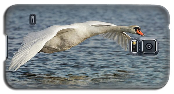 Galaxy S5 Case featuring the photograph Mute Swan by Roy McPeak