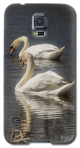 Galaxy S5 Case featuring the photograph Mute Swans by David Bearden