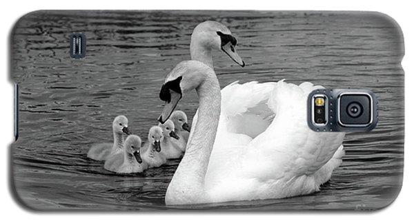 Mute Swans Galaxy S5 Case