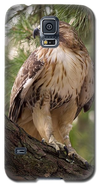 Galaxy S5 Case featuring the photograph My Best Side by Cheri McEachin