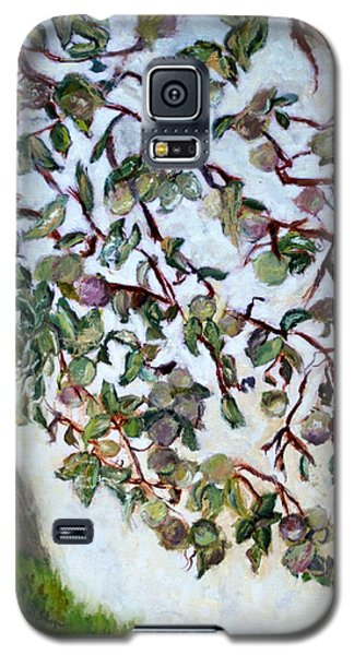 My Daughter's Apple Tree Galaxy S5 Case