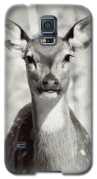 Galaxy S5 Case featuring the photograph My Dear by Jessica Brawley