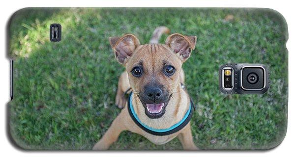 My Dog  Galaxy S5 Case