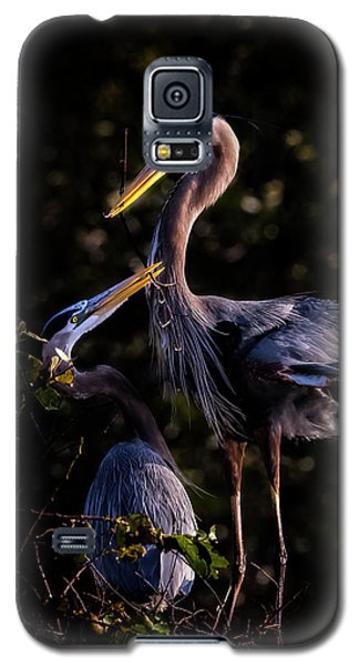My Hero Galaxy S5 Case