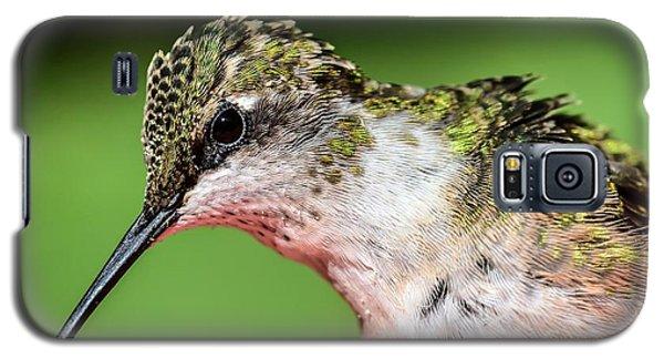 My Hummingbird Galaxy S5 Case