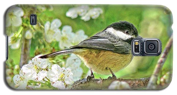 My Little Chickadee In The Cherry Tree Galaxy S5 Case